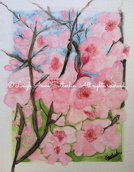 Plum Blossoms in Spring