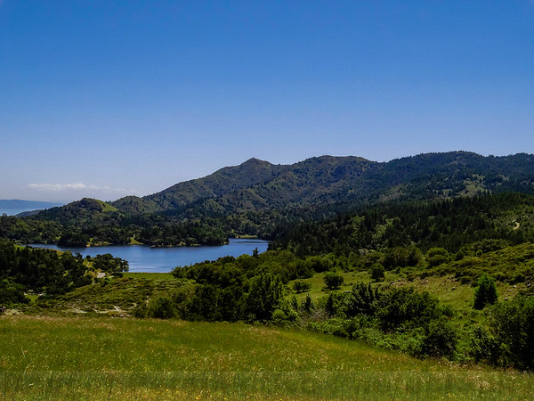 May on Mount Tam