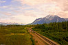 Anchorage to Mt. Mckinley-photo taken from the Princess bus 6-9-11