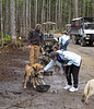 Musher Camp 6-12-11