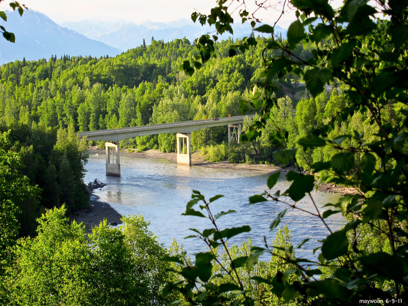 Bridge at Mt. McKinley short trail walk from the lodge 6-9-11