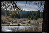Lake where we saw Osprey nest