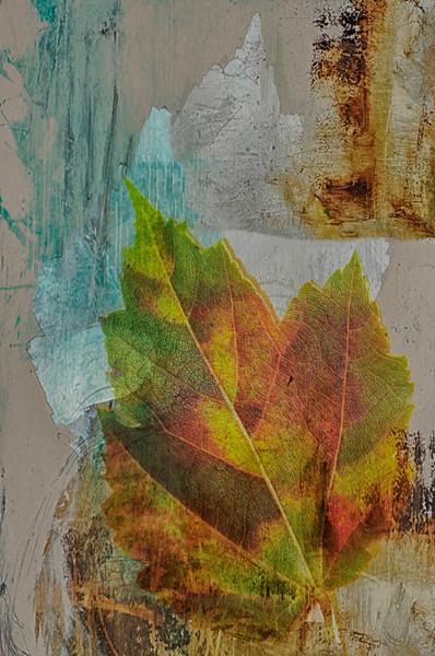 Autumn Composite