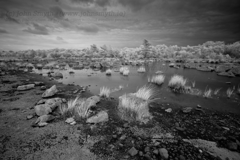 Infrared photo of limestone shoreline of Lough Mask near Clonbur.