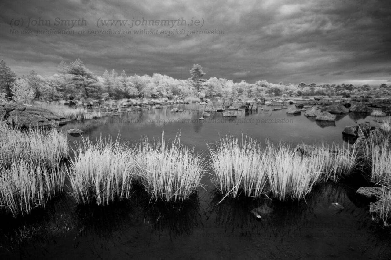 Infrared photo of limestone shoreline of Lough Mask near Clonbur.