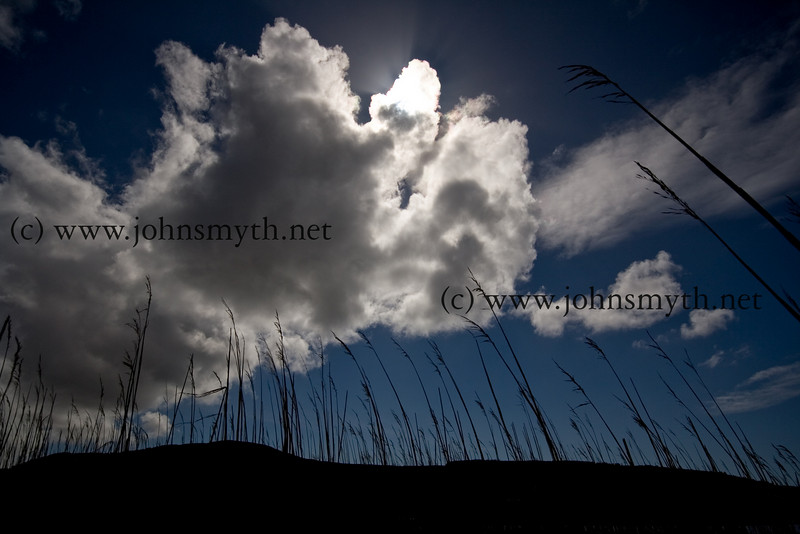 The sun hidden behind clouds near Doo Lough in Co. Mayo. This picture was taken in a drowned forest at Srahwee - only the stumps remain of a forest that grew about 5,000 years ago.