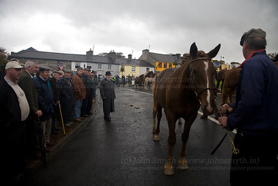 Checking the form - the judge sizes up an entrant during the 2006 Westport horse fair.