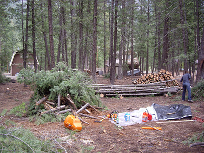 Final cleanup on Sunday.  We made some great progress, as evidenced by the pile of logs, pile of poles, and many burn piles.