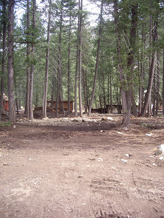 Looking at the leach field from Littell Road.