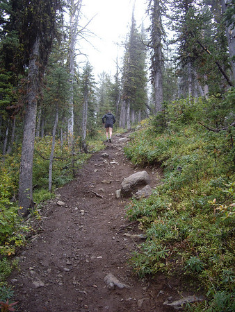 It was STEEP