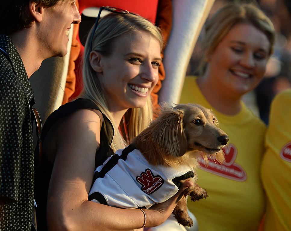 . Allison Schreib is all smiles as Archibald the Great won his heat in the 22nd Wienerschnitzel Wiener Nationals at Los Alamitos Race Course Saturday, July 22, 2017, Los Alamitos, CA.  (Photo by Steve McCrank, Daily Breeze/SCNG)