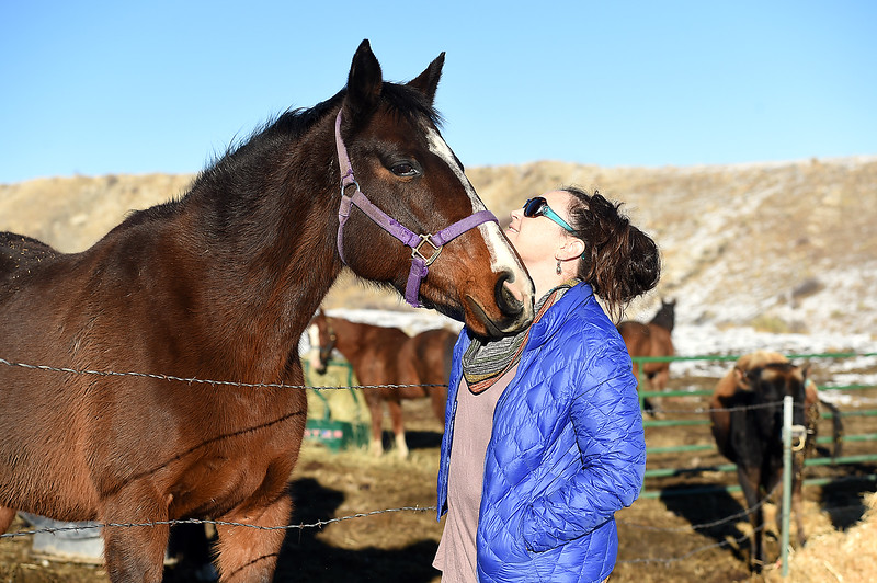 Maureen McDonough gets nuzzled by her horse, Cash, on Tuesday, Jan. 17, 2017, at the farm where she lives west of Berthoud. (Photo by Jenny Sparks/Loveland Reporter-Herald)