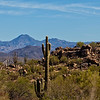 McDowell Sonoran Conservancy, Granite Mountain, Scottsdale Arizona
