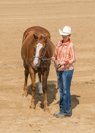 McKean County Fair Horse and Pony Judging-8 17 17-5604