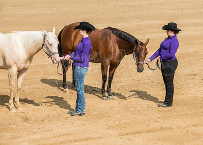 McKean County Fair Horse and Pony Judging-8 17 17-5585