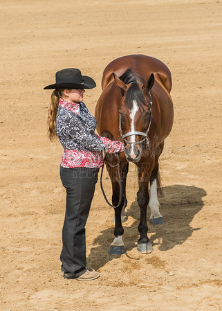 McKean County Fair Horse and Pony Judging-8 17 17-5593