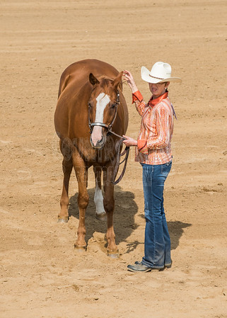 McKean County Fair Horse and Pony Judging-8 17 17-5603