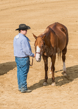 McKean County Fair Horse and Pony Judging-8 17 17-5579