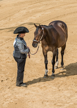 McKean County Fair Horse and Pony Judging-8 17 17-5602