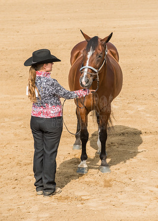 McKean County Fair Horse and Pony Judging-8 17 17-5581