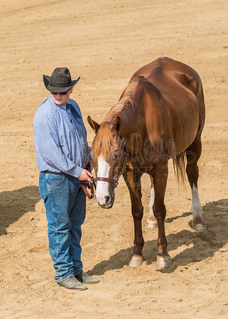 McKean County Fair Horse and Pony Judging-8 17 17-5591