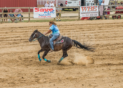 McKean County Fair Horse and Pony Judging-8 17 17-6138