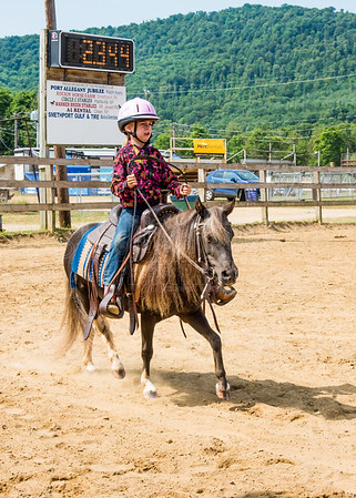 McKean County Fair Horse and Pony Judging-8 17 17-5727