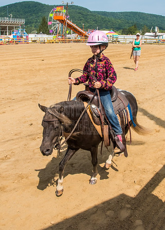McKean County Fair Horse and Pony Judging-8 17 17-5721