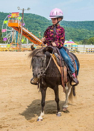 McKean County Fair Horse and Pony Judging-8 17 17-5729