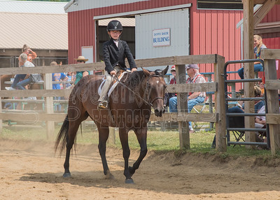 McKean County Fair Horse and Pony Judging-8 17 17-5747