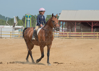 McKean County Fair Horse and Pony Judging-8 17 17-5746
