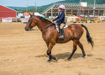 McKean County Fair Horse and Pony Judging-8 17 17-5715
