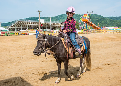 McKean County Fair Horse and Pony Judging-8 17 17-5730