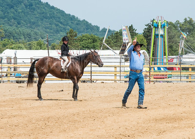 McKean County Fair Horse and Pony Judging-8 17 17-5750