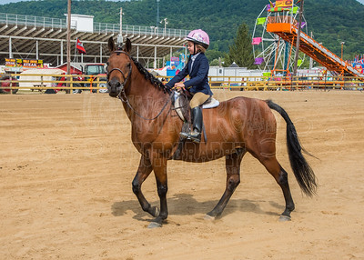 McKean County Fair Horse and Pony Judging-8 17 17-5714