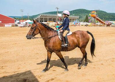 McKean County Fair Horse and Pony Judging-8 17 17-5720