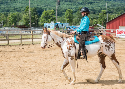 McKean County Fair Horse and Pony Judging-8 17 17-5739