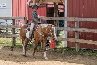 McKean County Fair Horse and Pony Judging-8 17 17-5751