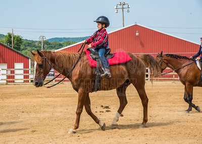 McKean County Fair Horse and Pony Judging-8 17 17-5722