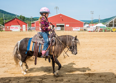 McKean County Fair Horse and Pony Judging-8 17 17-5728