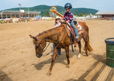 McKean County Fair Horse and Pony Judging-8 17 17-5716