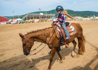 McKean County Fair Horse and Pony Judging-8 17 17-5717