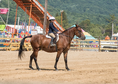 McKean County Fair Horse and Pony Judging-8 17 17-5742