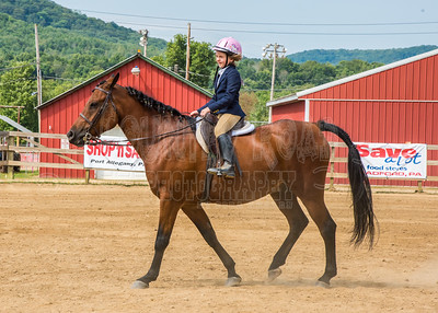 McKean County Fair Horse and Pony Judging-8 17 17-5723