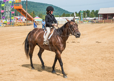 McKean County Fair Horse and Pony Judging-8 17 17-5749