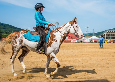 McKean County Fair Horse and Pony Judging-8 17 17-5725