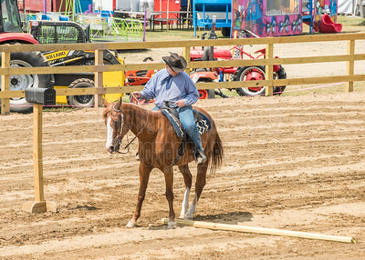 McKean County Fair Horse and Pony Show-Western, Trail, Reining Classes-August 17, 2017