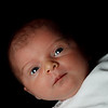 20090908-20090908-IMG_6768 copy-2-1