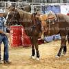 McNeese Rodeo 102716 029