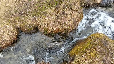 scenic stream bomber